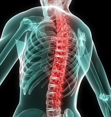 How to prevent back pain at work Your Charlotte Chiropractors Advice