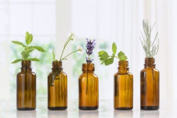 essential oil for the relief of back pain